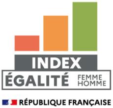 Logo de l'index sur l'égalité femmes-hommes